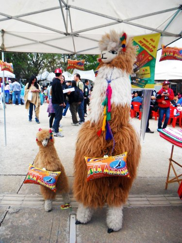 These delightfully soft alpacas are advertising calling cards to phone home. Other sponsors were remittance companies (that aid money transfers) and a Bolivian airline.